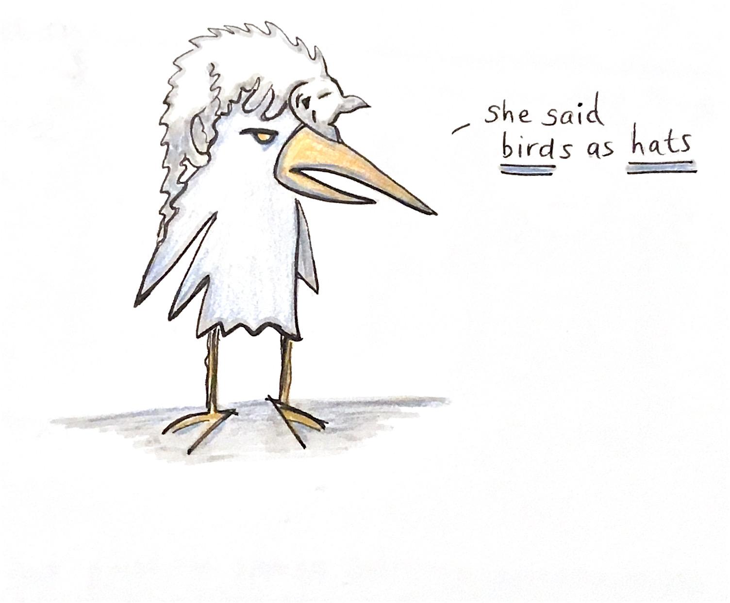 Birds-as-hats