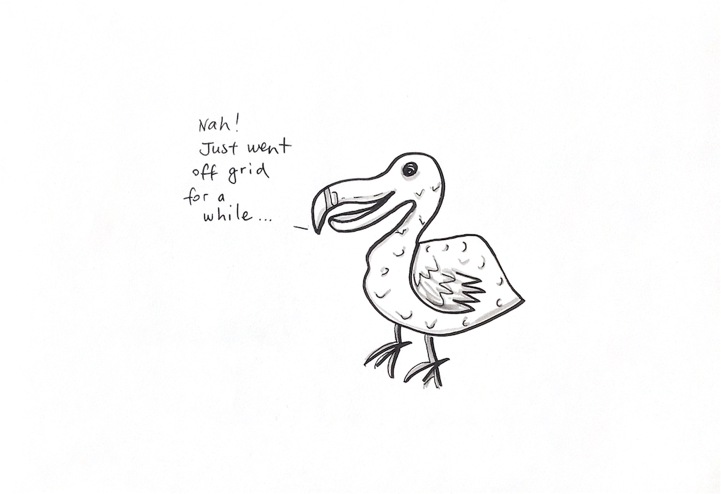 You are currently viewing Dodo