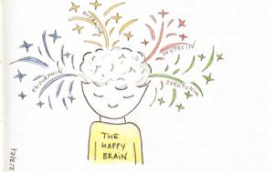 The Happy Brain…?